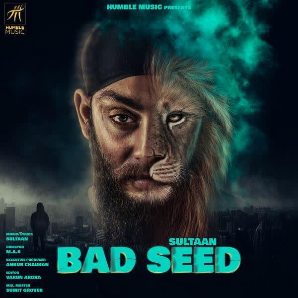 Bad Seed Sultaan