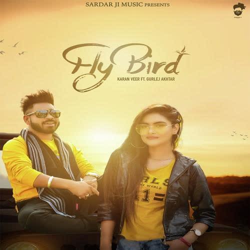 Fly Bird Karan Veer