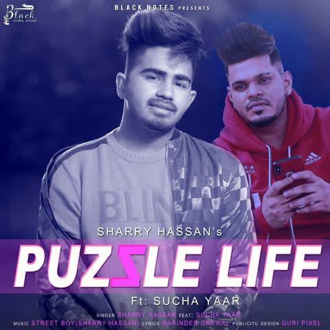 Puzzle Life Sharry Hassan